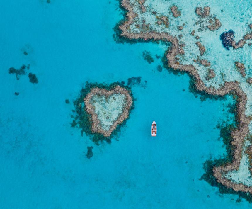 Qualia Great Barrier Reef:クオリア グレートバリアリーフ