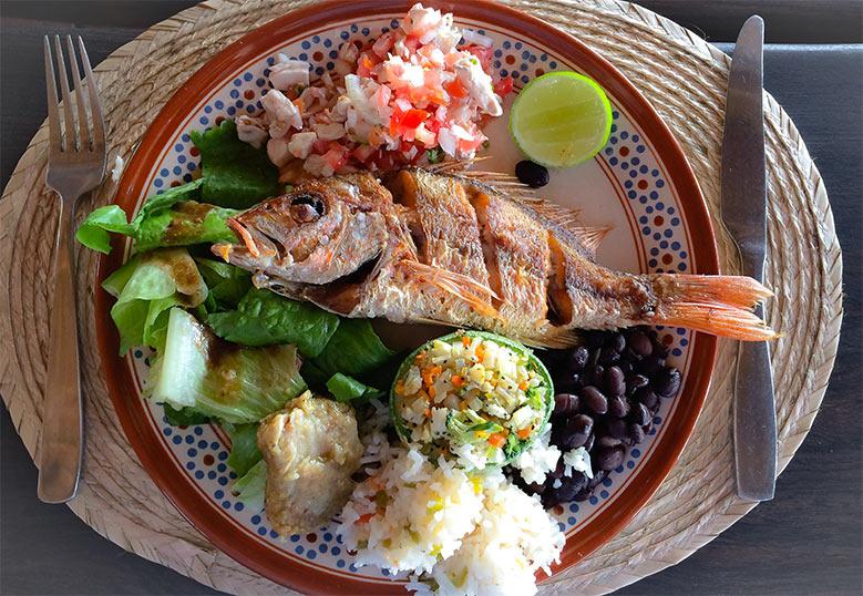 プラヤビバ|Playa Viva 料理
