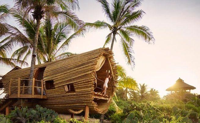 プラヤビバ|Playa Viva ツリーハウス