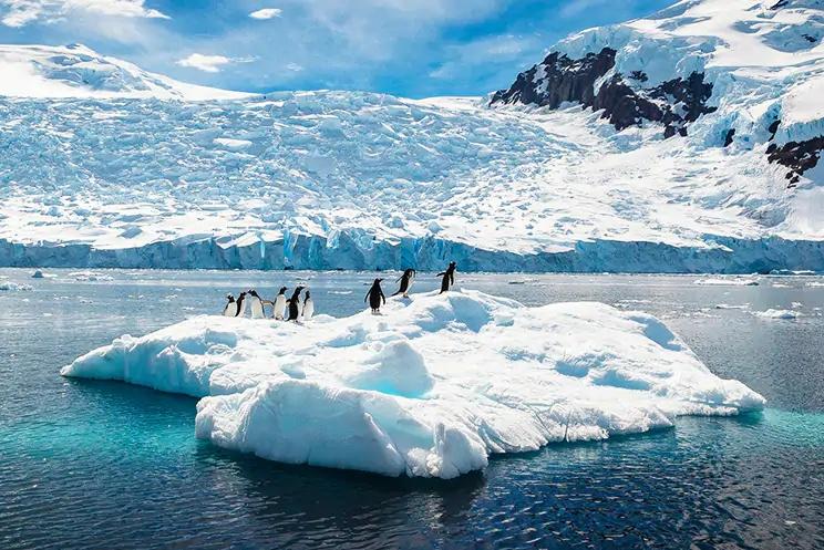 NCLクルーズ 南極クルーズ
