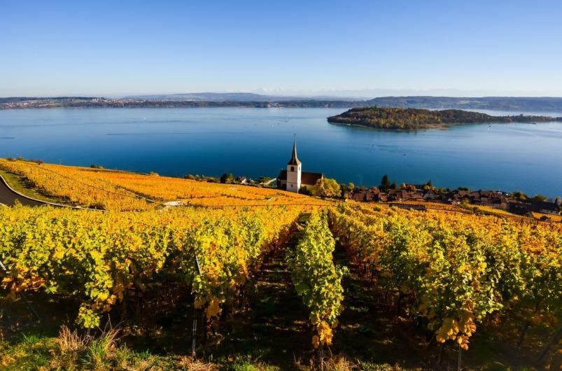 https://experiencefingerlakes.com/experience-2020-finger-lakes-wine-tours/